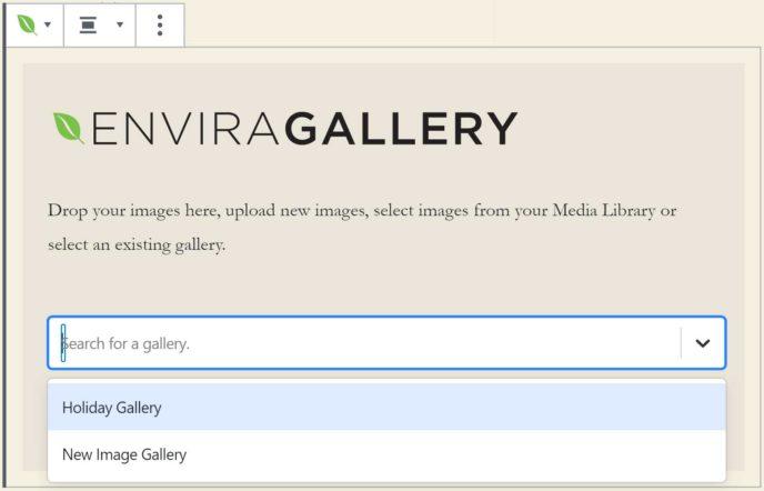 Envira Gallery Select Gallery